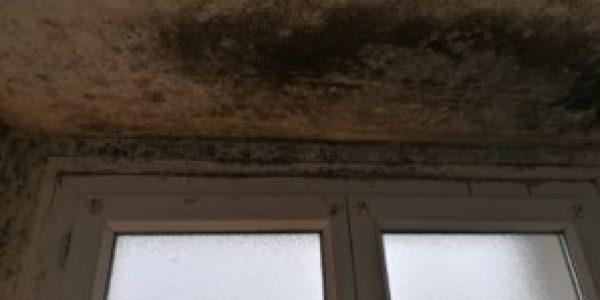 humidité au plafond